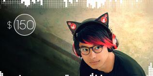 VIDEO Castile cu urechi de pisica, un adevarat fenomen pe internet