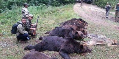 Primarul Smadu, despre fotografiile socante cu cei sapte ursi impuscati in Ocolul Silvic Domnesti: