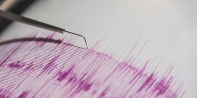 Cutremur de 4,1 pe scara Richer produs in Vrancea